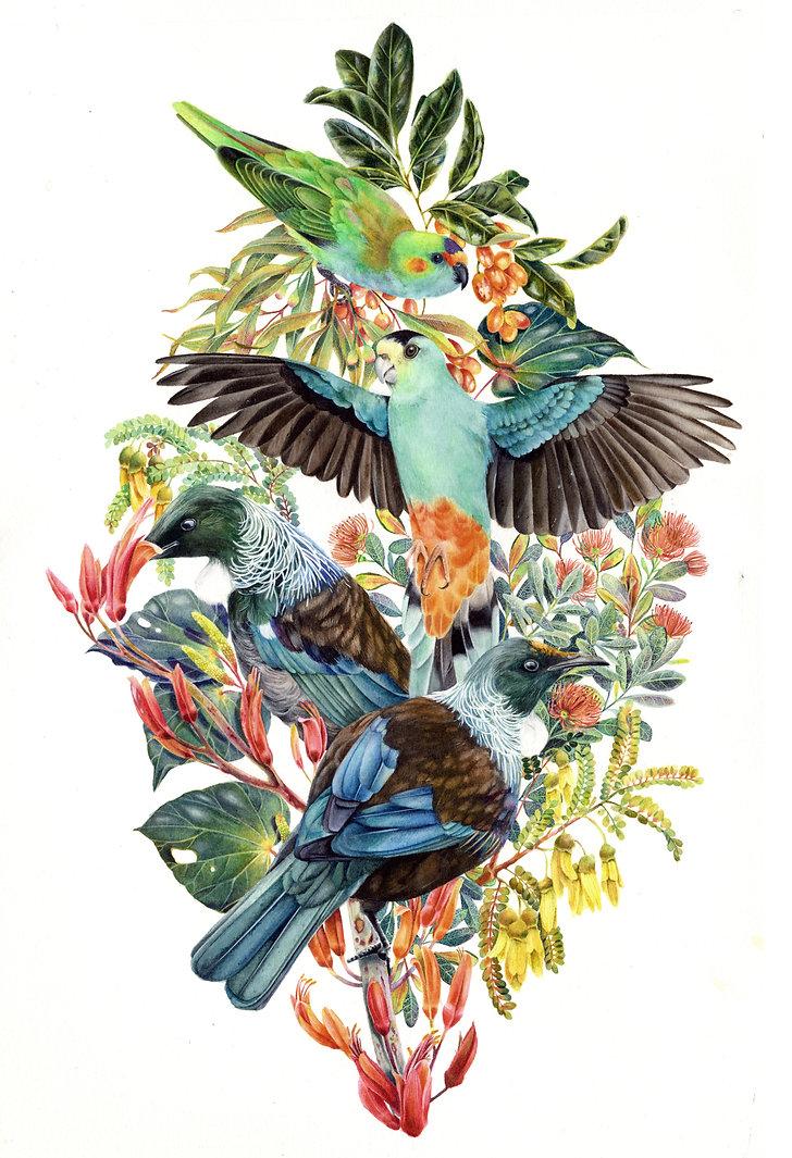 AntipodeanBirds.jpg