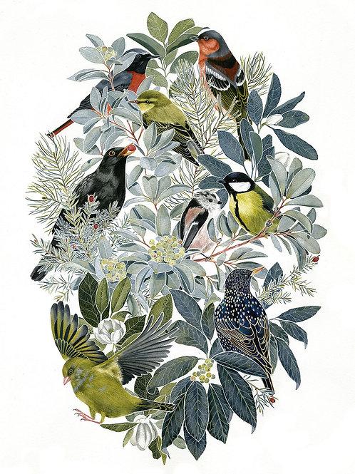 'Birds I' Giclée Print