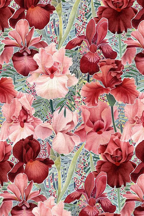 'Iris' Digital Print