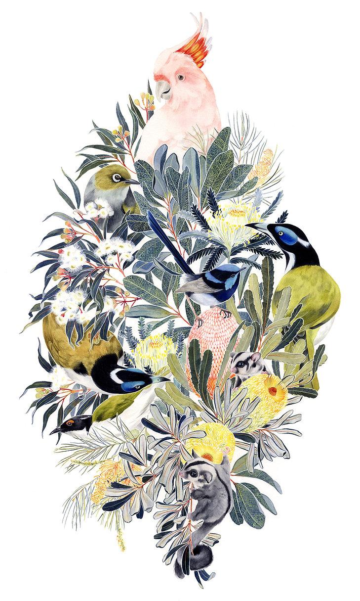 BirdsII-web.jpg