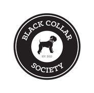 BCS_Logo_Transparent_BG.png