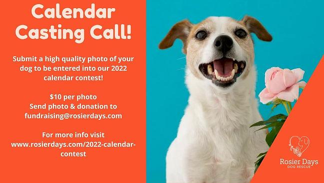 Casting Call!.jpg