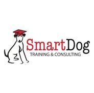 Smart Dog 3.png