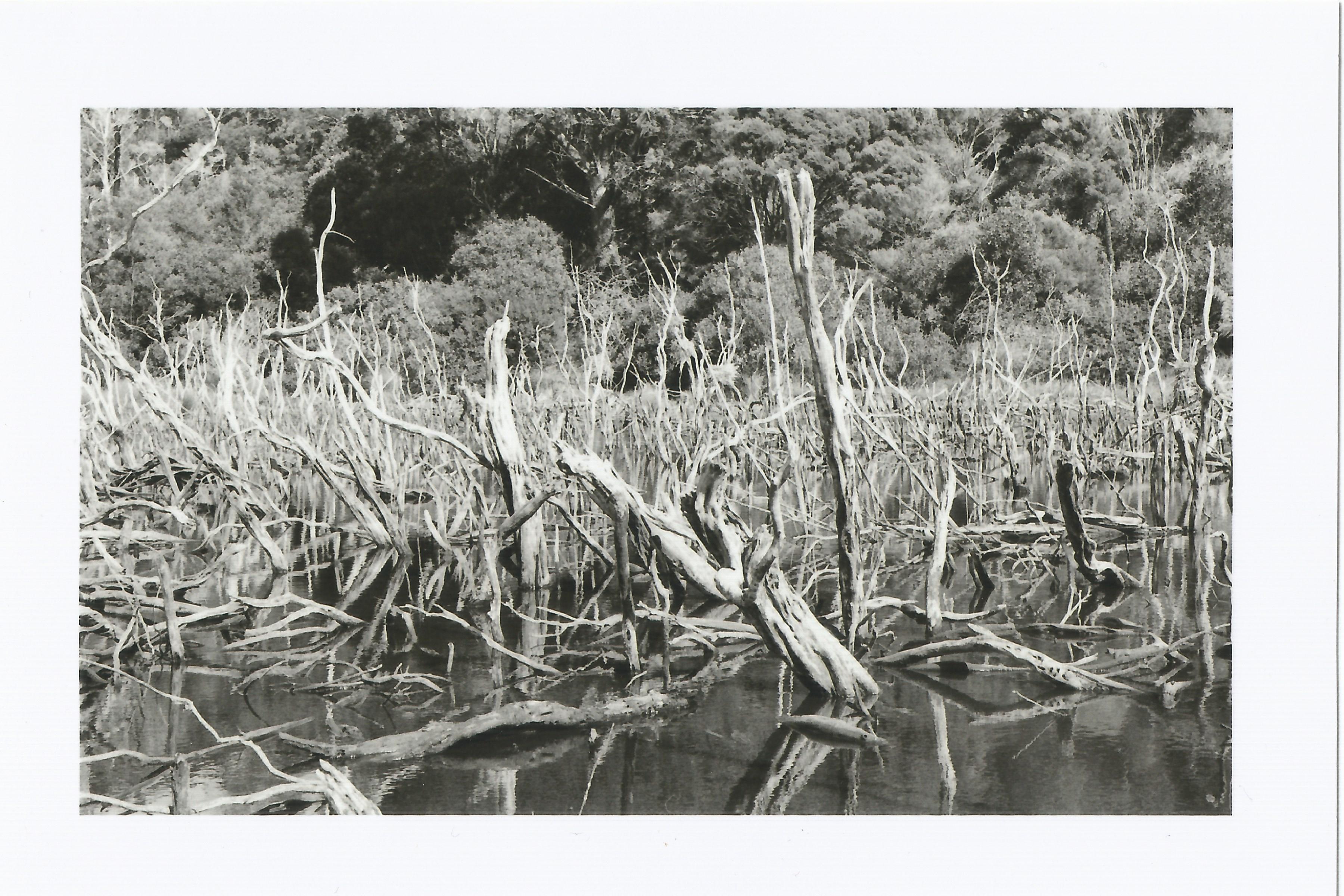 ki iwi lakes.jpg