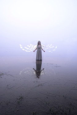 angel in the mists