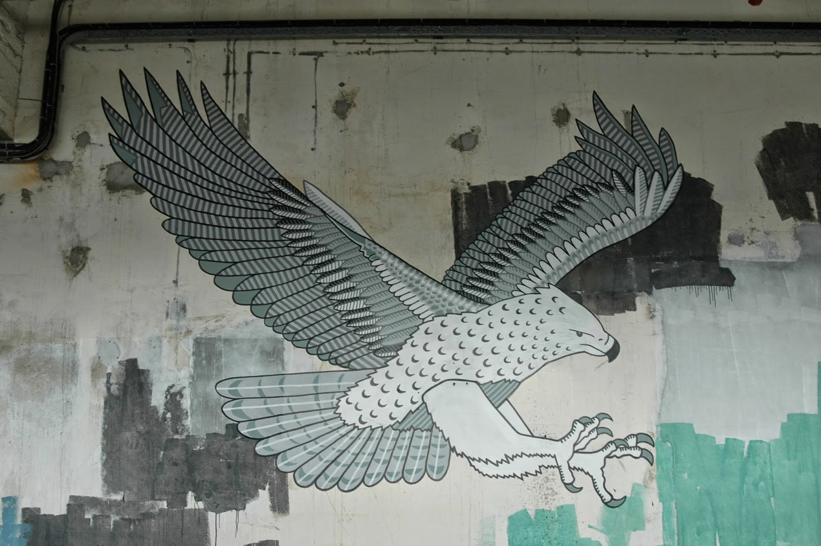 Martial Eagle Mural, New Zealand