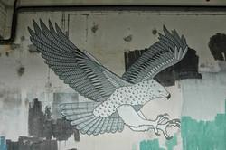 Martial Eagle Mural, New Zealand