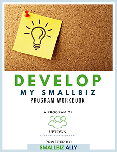 DEVELOP MY SMALLBIZ WORKBOOK (1).png