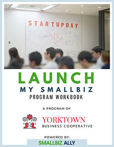 LAUNCH MY SMALLBIZ WORKBOOK (2).png