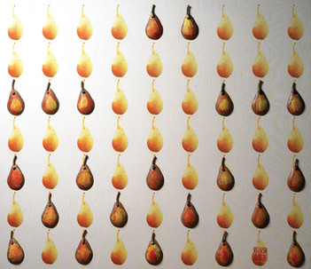 """American Pear"". Wall relief. 2011. Digital photo printing on silk, silver, copper, patina, oil paint. 50"" x 40"" x 4""."