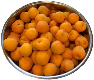 apricots 1000.jpg