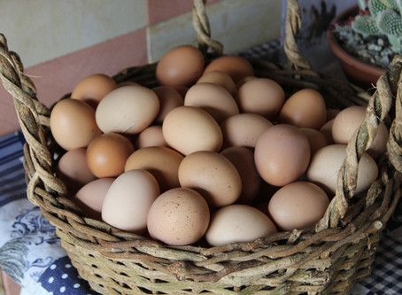 What's with all the Fancy Egg Labels?