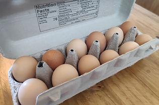dz eggs.jpg