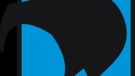 NZSIA logo- ski.png