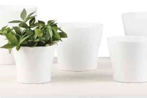 'Panna' White Glass Pots