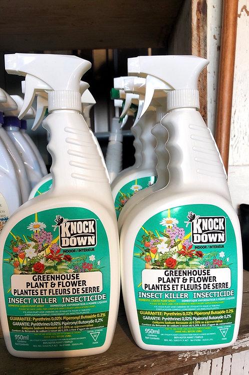 Knockdown Indoor Plant/Flower Insect Killer