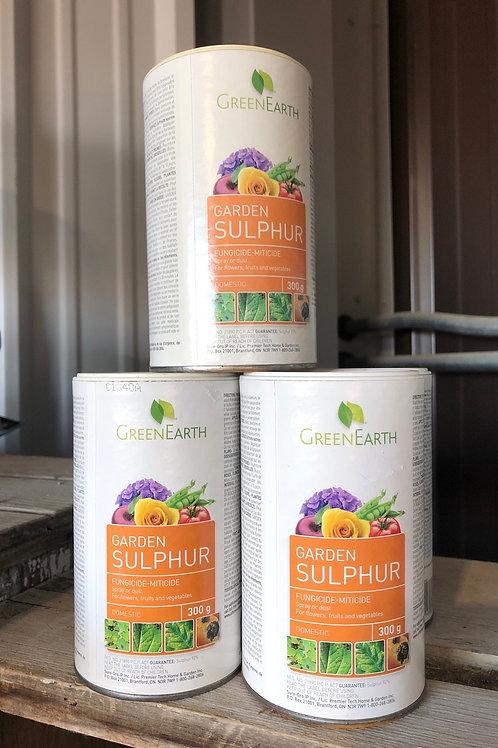 Garden Sulphur