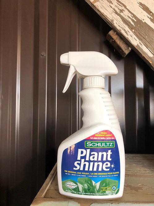 Plant Shine