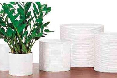 'Panna' White Textured Glass Pots