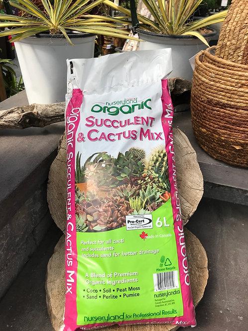 Succulent & Cactus Mix- 6Ltrs