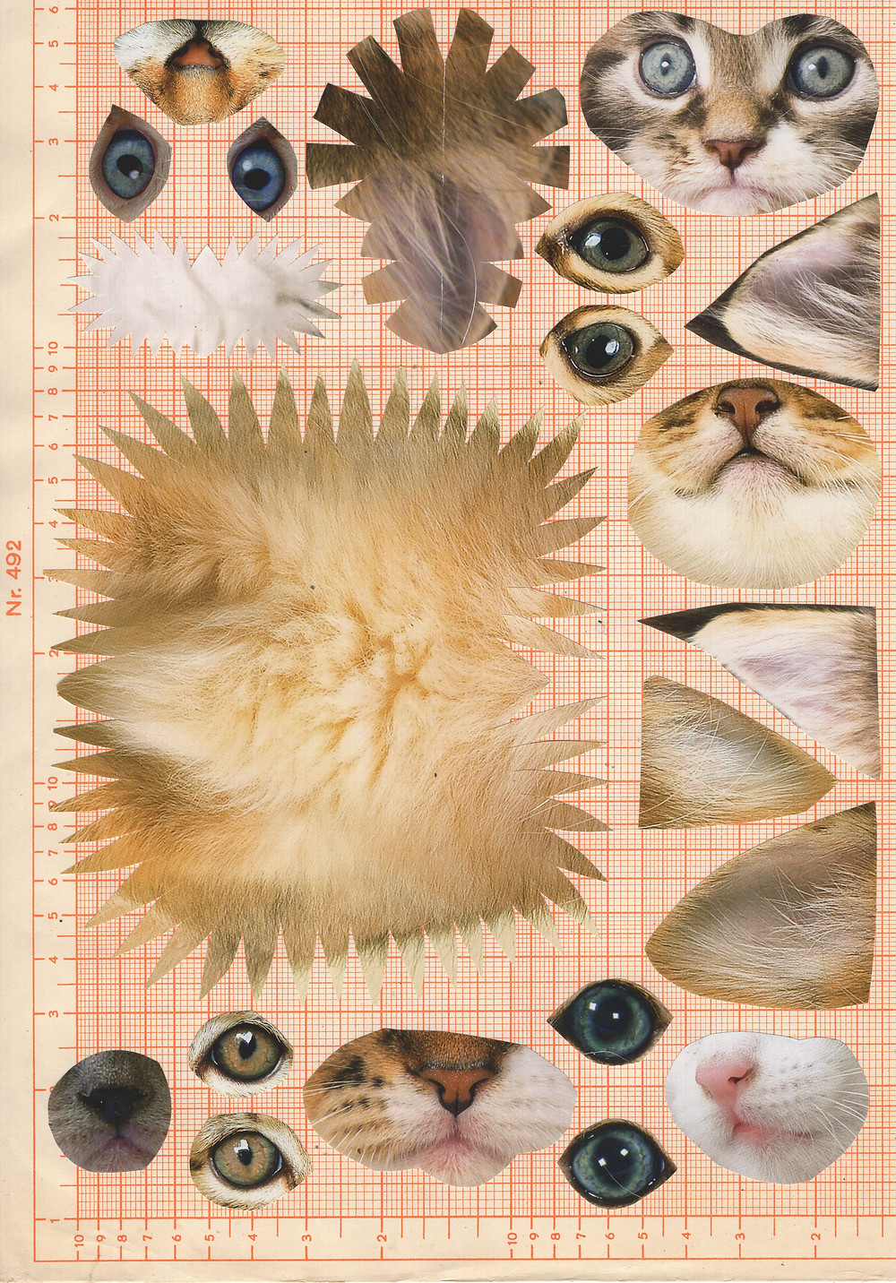Digital Collage Kit Download