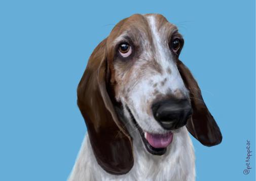 Wyat's portrait