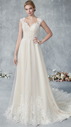 Style BE539