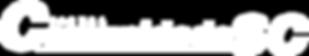 Jornal Comunidade Santa Catarina, São José, noticias, cidade, Santa Catarina, município, Florianopolis, Palhoça, Biguaçu, noticias da grande Floripa, jornal da cidade de são jose, Jornal Comunidade SC