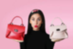 Which Bag- Valentines Selection.jpg