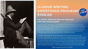 14Hour Writing Assistance Program Promot