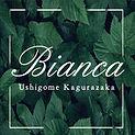 kagurazaka002.jpg