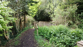 Hilly walk in the North Bourne (2.7 miles)