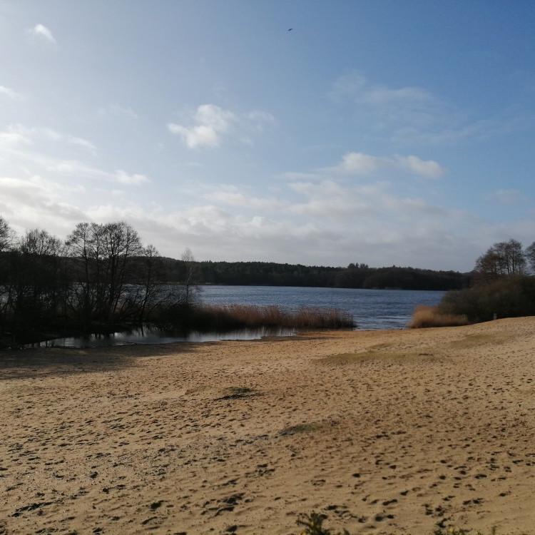 Around both Frensham Ponds