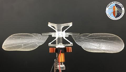 HUJI Micro Flight Lab - Flapper prototyp