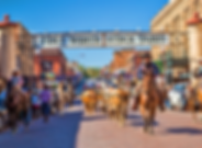 stockyards1.png