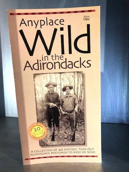 Anyplace Wild in the Adirondacks