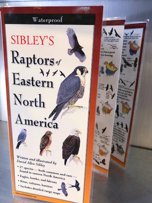 Sibley's Raptors of Eastern North America Waterproof Folding Guide