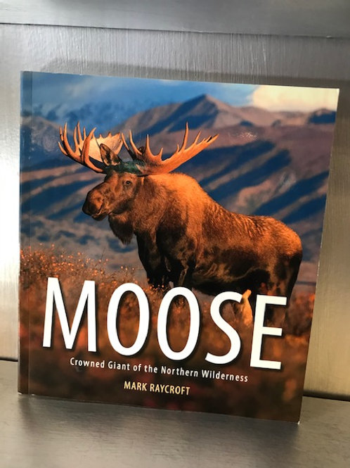 Moose - Crowned Giant of the Northern Wilderness