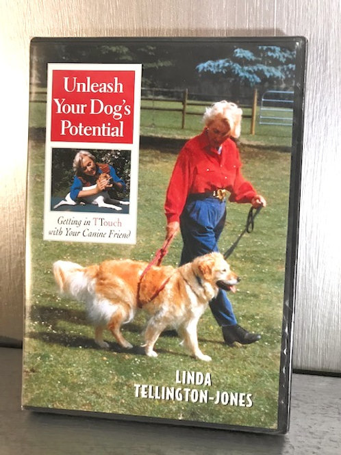 Unleash Your Dogs Potential