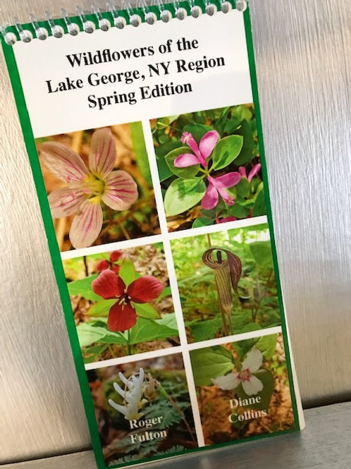 Wildflowers of the Lake George, NY Region Spring Edition