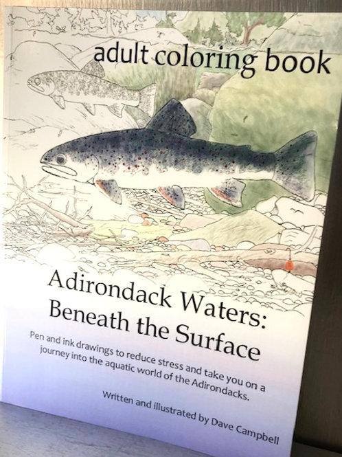 Adirondack Waters Adult Coloring Book