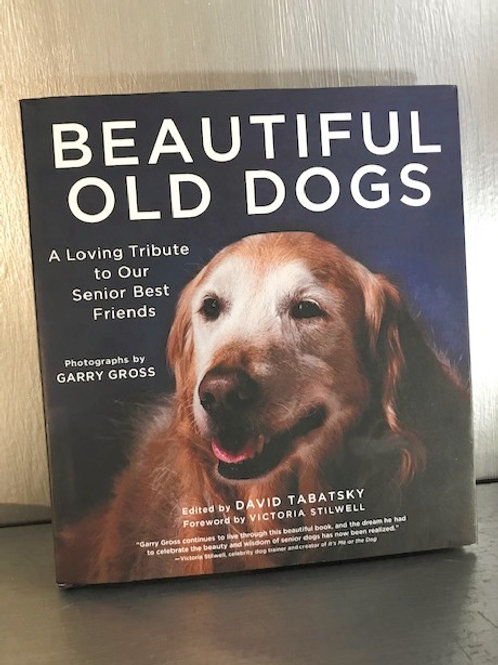 Beautiful Old Dogs - A Loving Tribute To Our Senior Best Friends