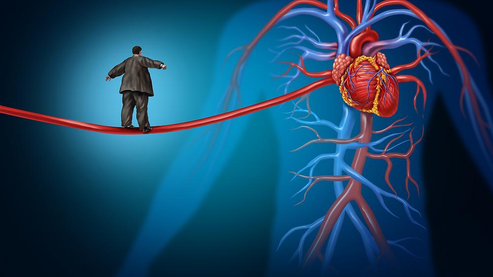 sirds un asinsvadi, asinsvadu veselībai