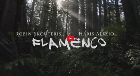 Flamenco Remix (Na Ziso I Na Pethano)