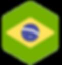 ltts-brasil-flag.png