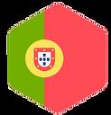 ltts-port-flag.png