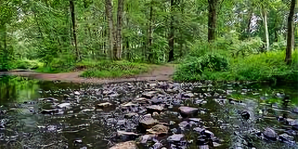 Hike at Housatonic Overlook