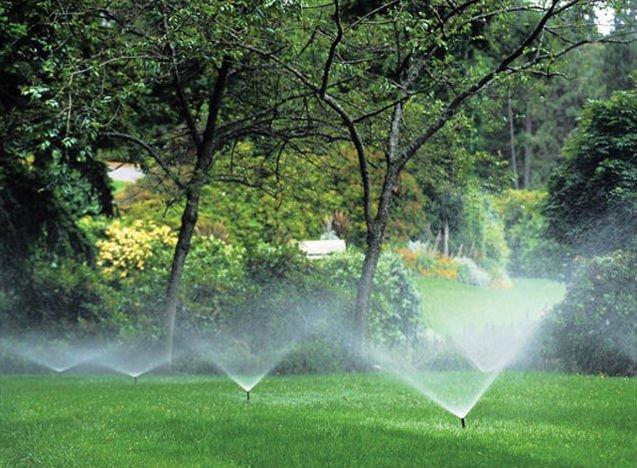 Irrigation+Services.