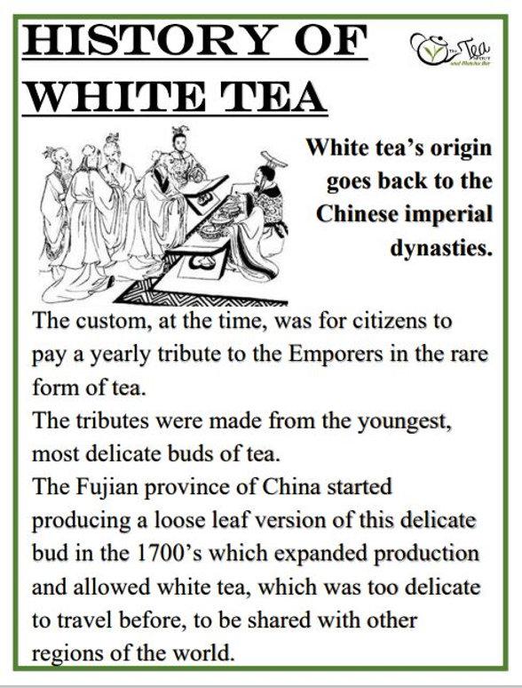White Tea History.JPG