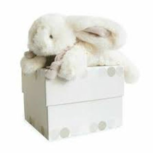 DouDou Boxed Bunny Taupe 20cm